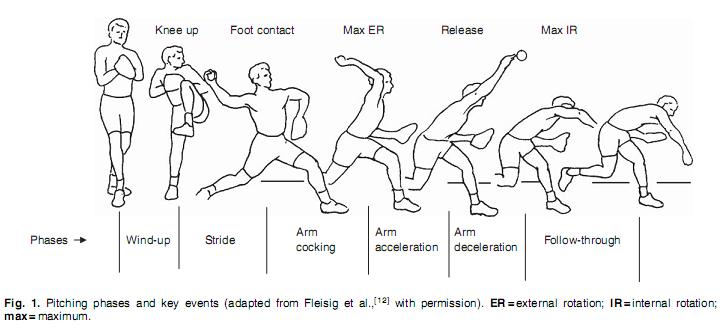 Phases_of_throwing